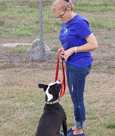 Community Volunteer Opportunities in LaBelle, FL | Caloosa Humane Society