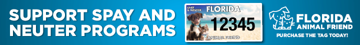 Support Spay and Neuter Programs with Florida Animal Friend | Caloosa Humane Society